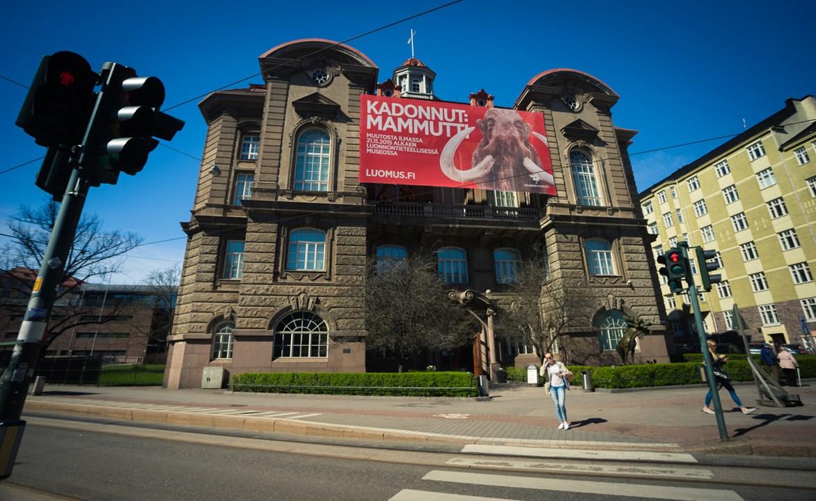 В центре Хельсинки находится музей естественной истории Natural History Museum
