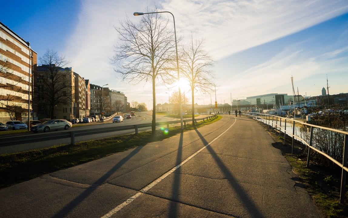 Пешеходная и велодорожка в свете солнца