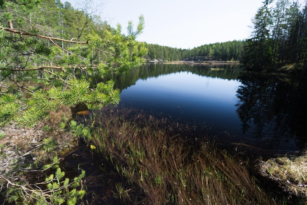 На озере Mustalampi