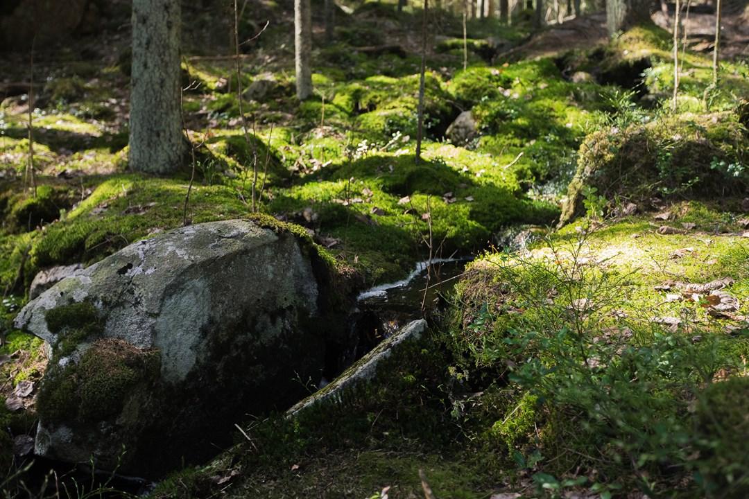 Ручеек между камней в Нууксио