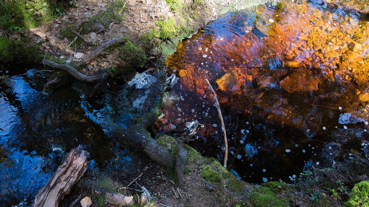Прозрачная вода в ручье Нууксио