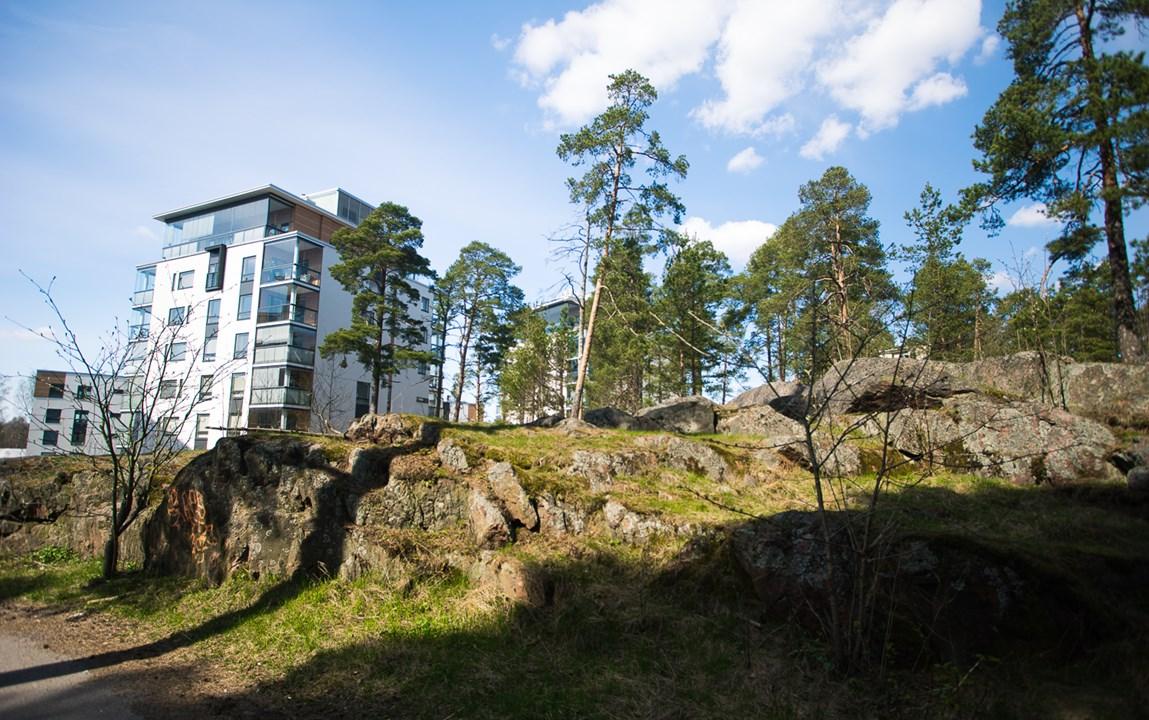В Эспоо стройматериалы для зданий являются экологическими чистыми