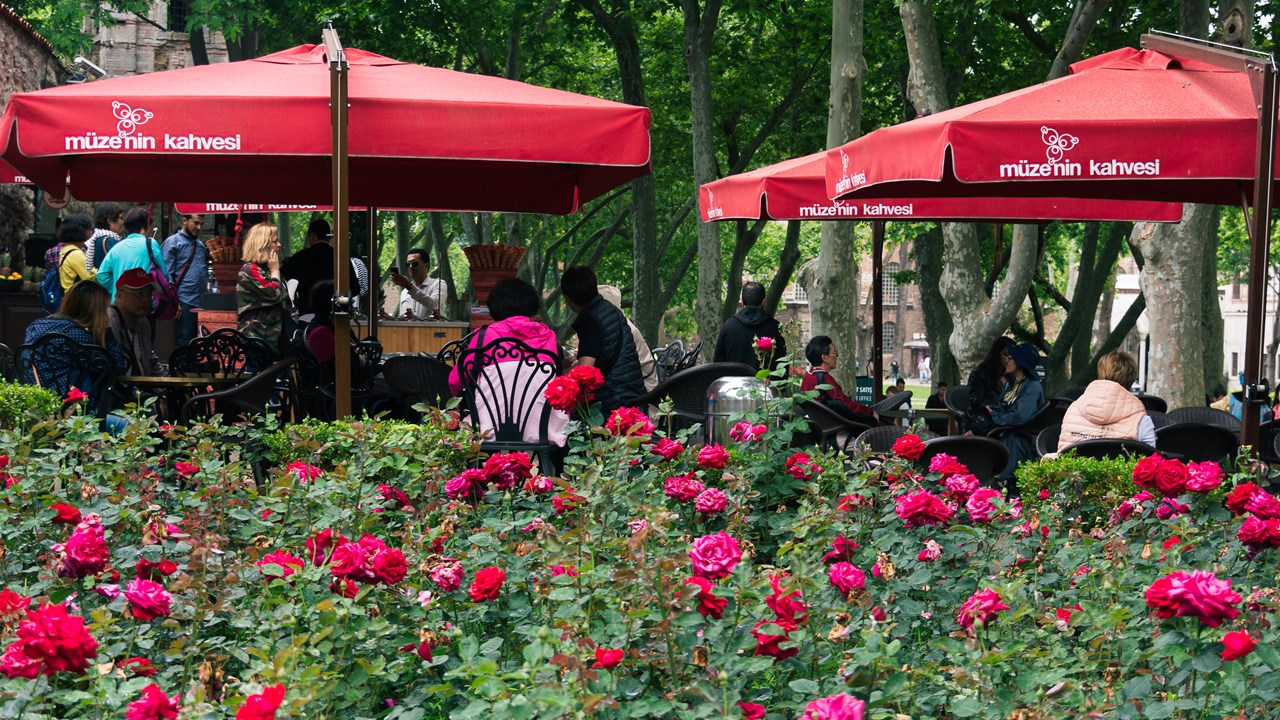 Кафе в цветах около кассы во дворец-музей