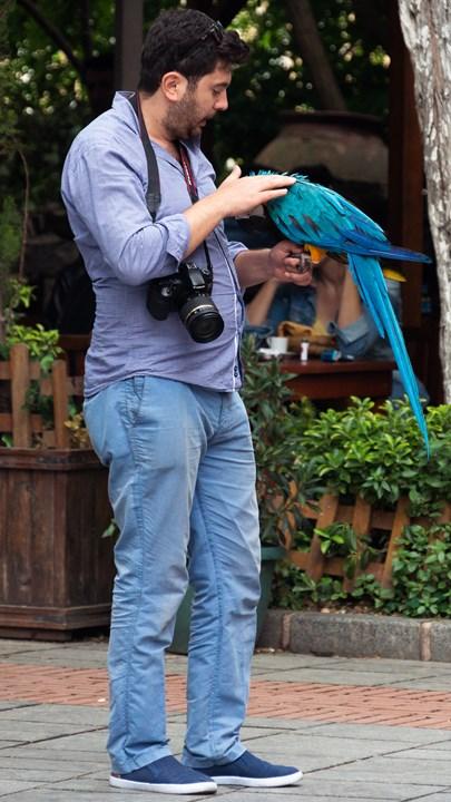 На площади рядом с Галатской башней можно сделать фото с попугаем